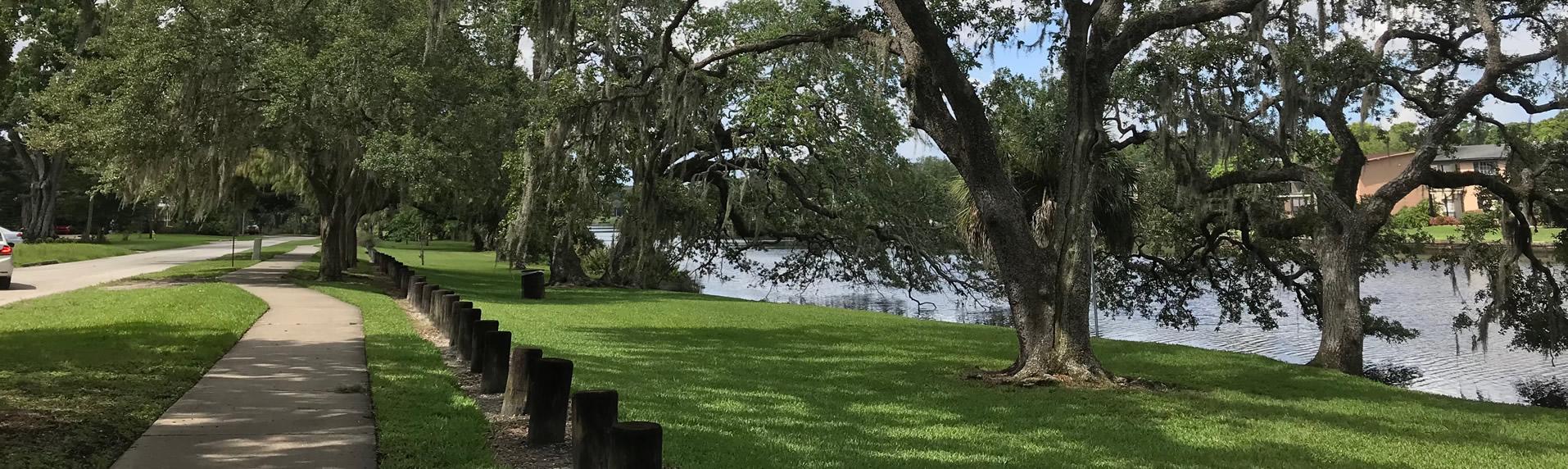 River greenway